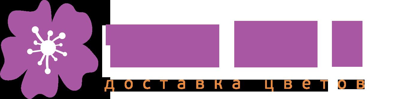 Vasilek